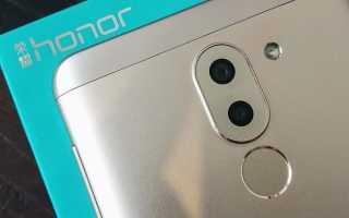 Обзор смартфона Huawei Honor 6X: двухкамерный и доступный