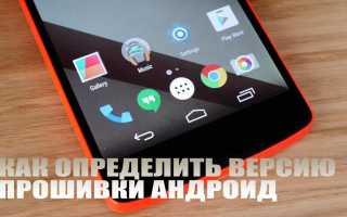 Как узнать версию Андроид на Samsung Galaxy