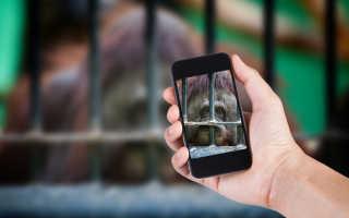 Corning Gorilla Glass 4: попрощайтесь с разбитым дисплеем при падении смартфона
