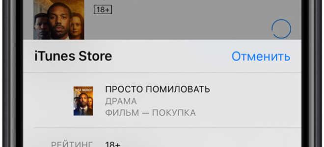 IPhone без Touch ID — что это и стоит ли покупать? Не работает Touch Id на iPhone.
