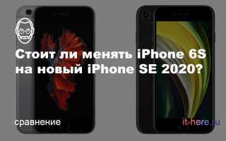 Сравнение iPhone 6 и iPhone SE — что выбрать?