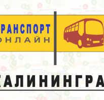Яндекс транспорт Калининград